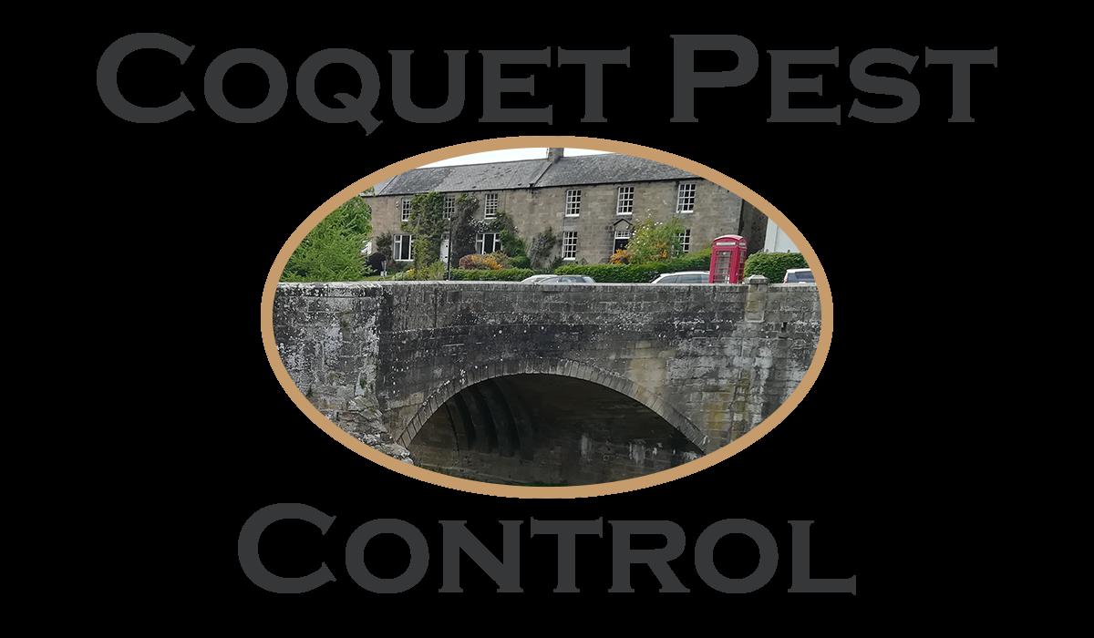 Coquet Pest Control